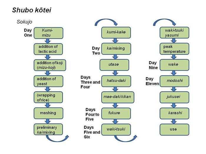 Shubo kotei (sokujo)
